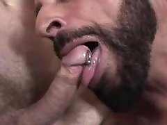 Muscular bear copulation gay heavily